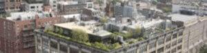 Dachbegrünung Dachgarten Köln Bonn Düsseldorf