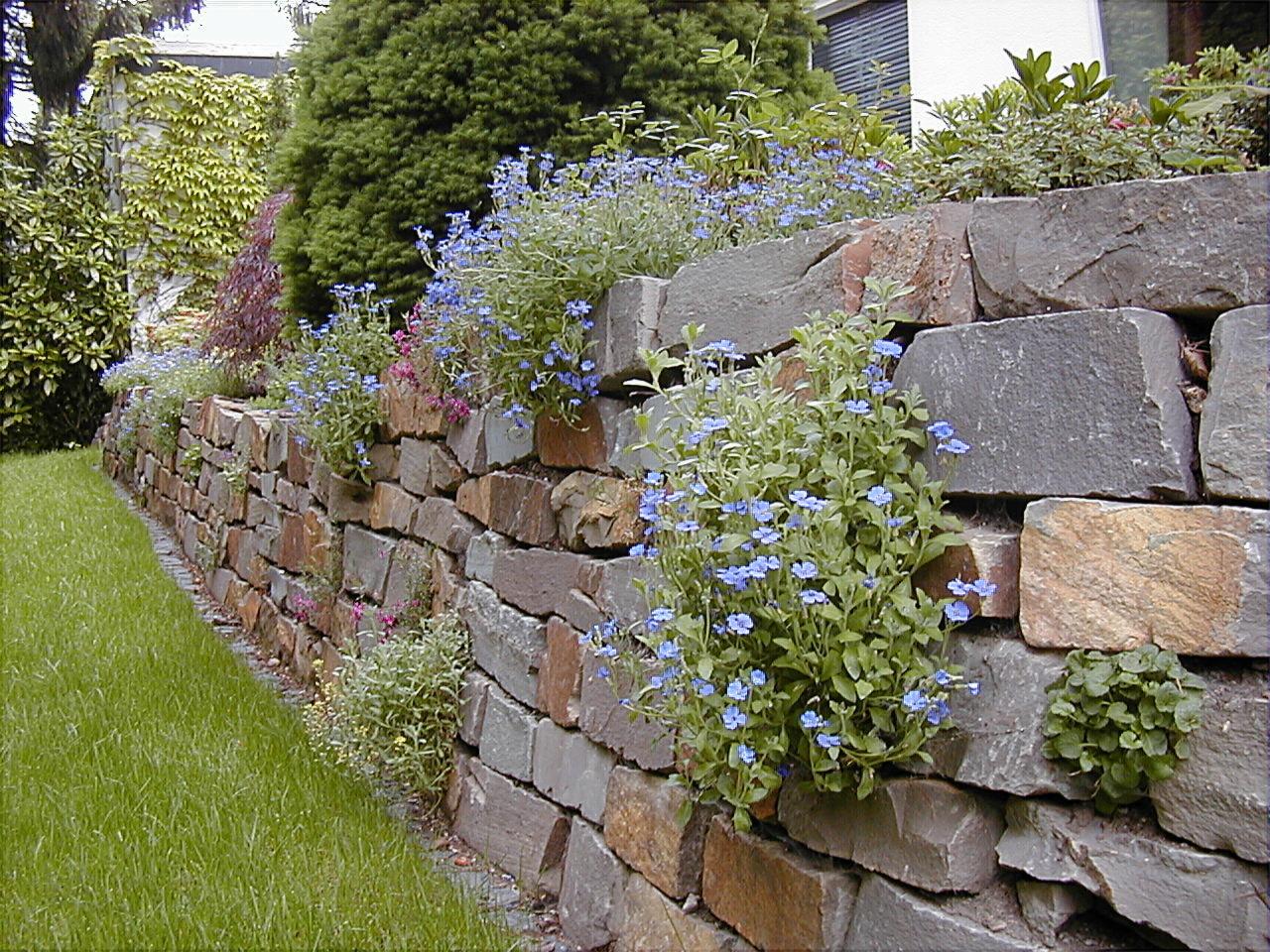 Natursteinmauer gartenbau und landschaftsbau aus - Gartenbau erftstadt ...