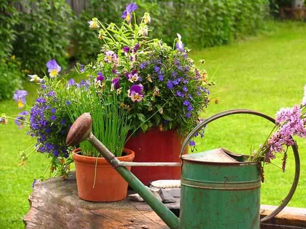 Schubkarre gartenbau und landschaftsbau aus erftstadt wir planen und bauen ihren garten - Gartenbau erftstadt ...