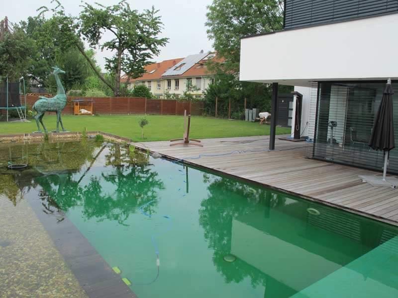 Schwimmteich1 gartenbau und landschaftsbau aus erftstadt - Gartenbau erftstadt ...