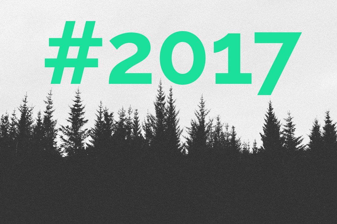 Baum des Jahres 2017 Die Fichte