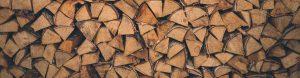 baumfällung und baumpflege in köln